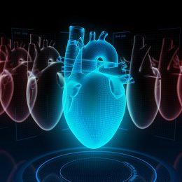 Entenda a relação entre circunferência abdominal e risco cardiovascular