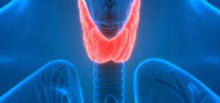 Disfunções da Tireóide e o risco da doença cardiovascular